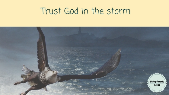 trusting God when life hurts
